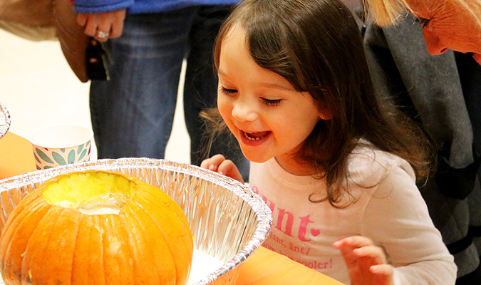 New Haven Hosts Fall Festival